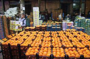 ذخیره سازی میوه شب عید/آیا نوروز ۹۸ با کمبود میوه مواجه خواهیم شد؟