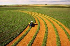گام بلند دولت برای توسعه و گسترش بخش کشاورزی در سال آینده